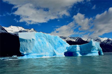 <亚特兰蒂邮轮巴西-阿根廷-南极23-24日游>2020至2021预售立减****,北上港出发,华人包船,2017新装修,送冲锋衣,有机会登陆长城站