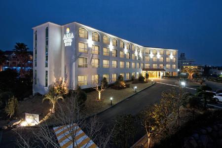 阿丽雅酒店