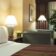 埃尔特尔广场酒店图片
