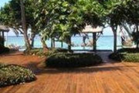 茂宜棕榈酒店