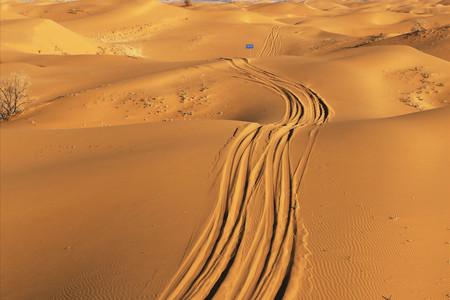 <宁夏中卫-沙坡头1日游>天天发团1人起订小假期精选沙漠深度体验游畅玩沙漠长河落日