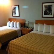 贝斯特韦斯特好莱坞山庄酒店图片
