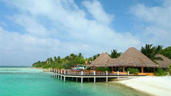 马尔代夫白金岛度假村