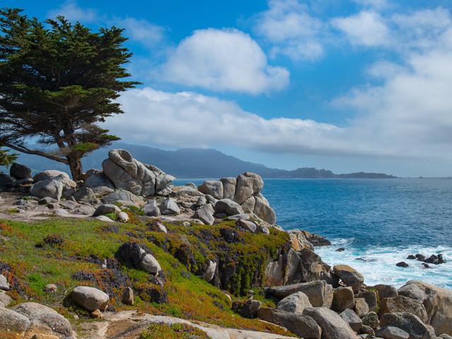 <美国西海岸+旧金山当地4日游>纳帕酒乡或17里湾二选一,旧金山接机(当地参团)