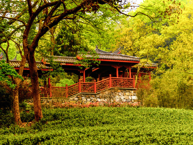 杭州 灵隐寺