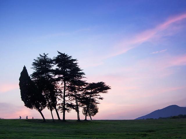 在紫金山顶看绝美日出