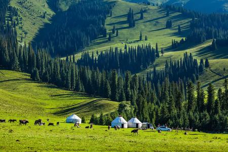<烏魯木齊-天山天池-吐魯番-巴音布魯克-那拉提-賽里木湖10日游>北疆行,無購物無套路,1車到底,含24H當地接送機