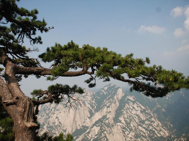 <西岳华山探险1日游>0购物 赠地图或手套 三环内免费接送