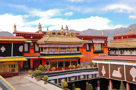<西藏拉萨-布达拉宫-雅鲁藏布大峡谷-鲁朗-羊湖7日游>深度全景,林芝小瑞士,藏地石锅鸡(当地参团)