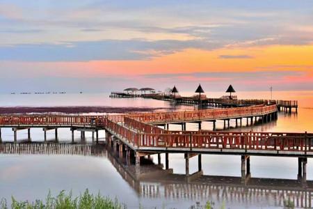 <盘锦红海滩2日游>周末度假、红滩绿苇、奇观稻田画、红海滩风景廊道、湿地风情、私人沙滩、看大海泡温泉、大连起止、秋季旅游线路
