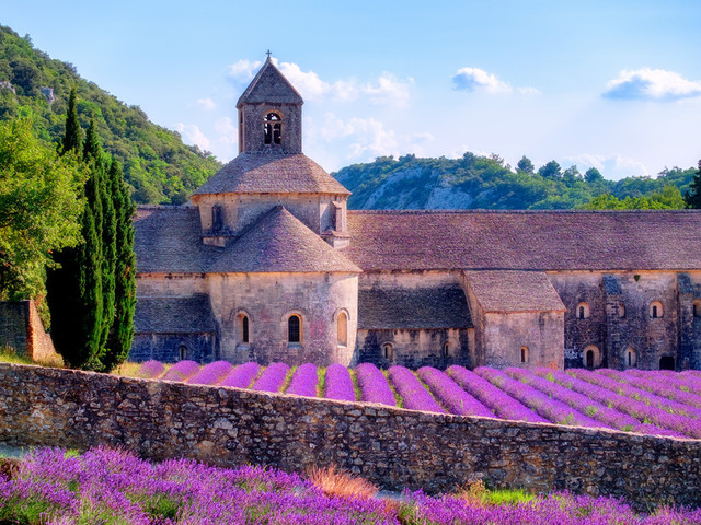 塞南克修道院|法国最宁静的修道院