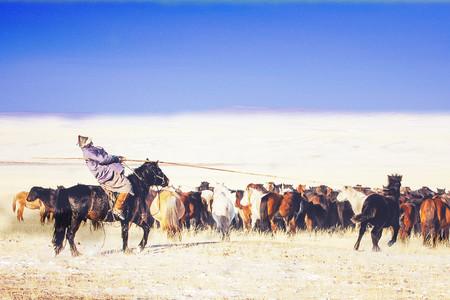<呼和浩特+希拉穆仁草原+银肯响沙湾4日游>含3个景点骑马套票、响沙湾索道,套票,纯玩旅游