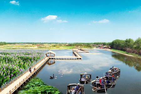 <泰州溱湖国家湿地公园1日游>水乡明珠