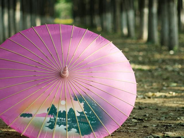 杭州油纸伞