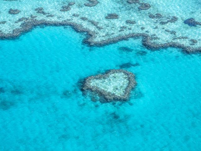 风景篇•澳洲(3)去大堡礁来一次浪漫之旅