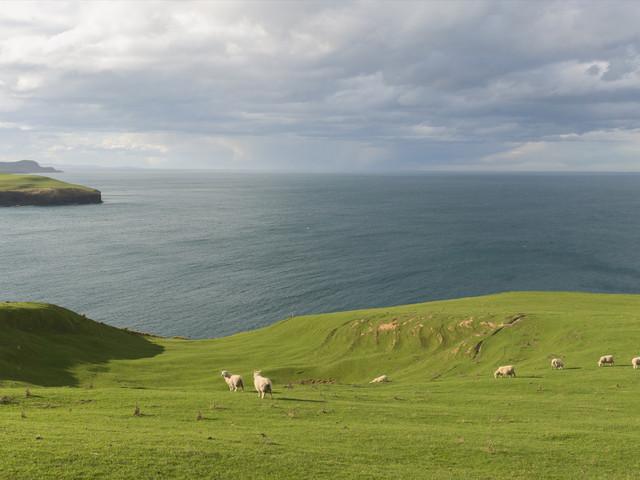 <新西兰全南岛全景8日游游>千层薄饼岩,福斯冰川,米佛峡湾,小蓝企鹅,皇后镇一整天自由活动(当地参团)