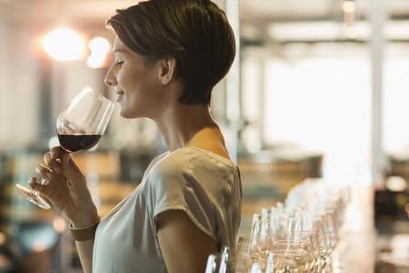 <南澳州阿德莱德芭萝莎峡谷酒庄中文1日游>周3、6中文团出发,0购物,下单后24小时确认