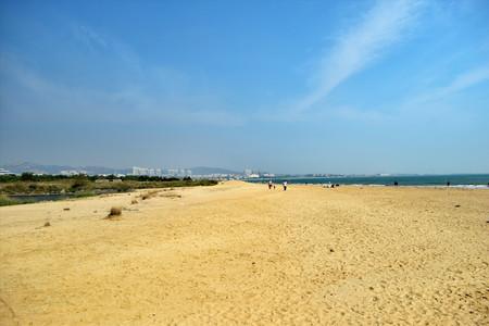 <青岛+日照3日游>含海鲜宴   含青岛海底世界 真正海边自由活动