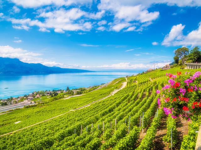 有一种世界第一的幸福——瑞士
