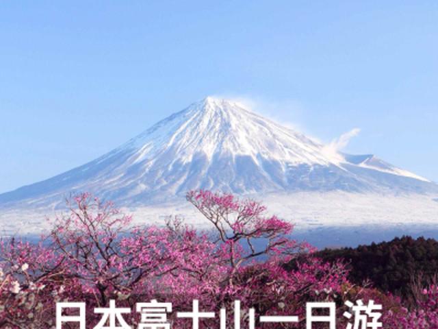 <日本旅游东京富士山一日游忍野八海五合目河口湖箱根可选市区接送>