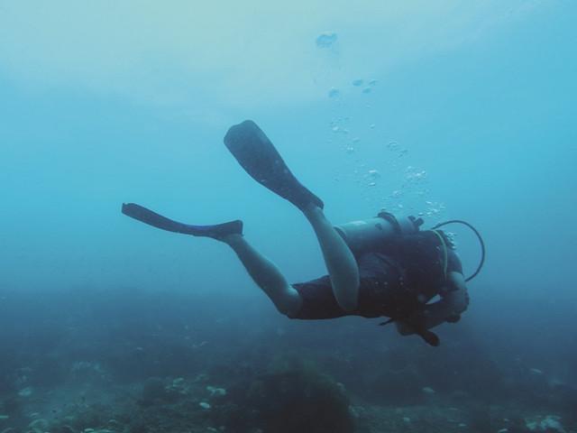<马来西亚沙巴亚庇东姑阿都拉曼公园水肺潜水体验>