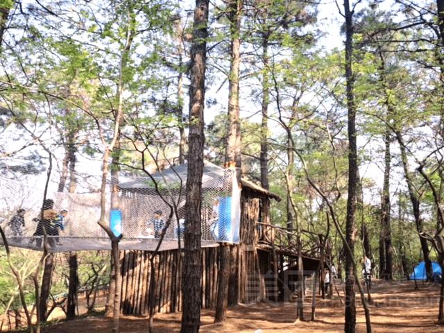 <松鼠咔咔森林乐园>是您休闲娱乐的好去处