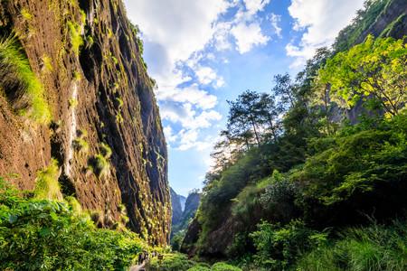 <武夷山-茶旅体验-下午茶4日游>私家团,当地参团,五星酒店,0自费,天游峰,武夷茶园,印象大红袍,岩骨花香漫游道