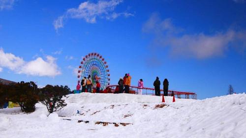 飞 5日4晚 大阪环球影城含门票+六甲山戏雪+嵯