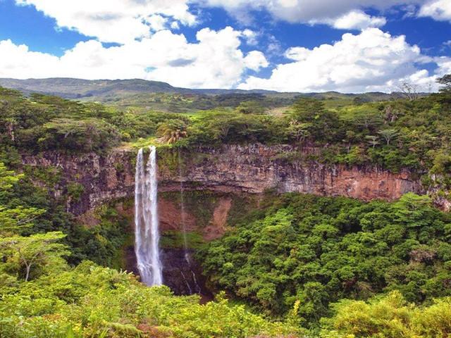 <毛里求斯海豚湾+七色土+卡塞拉自然公园一日游【毛里求斯西部动物之旅】>
