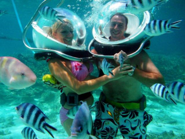 <馬來西亞 仙本那水上拖曳傘+珊瑚花園海底漫步>獨特視角  廣闊視野  觀賞海底美景  漫游奇妙世界  體驗上天入海