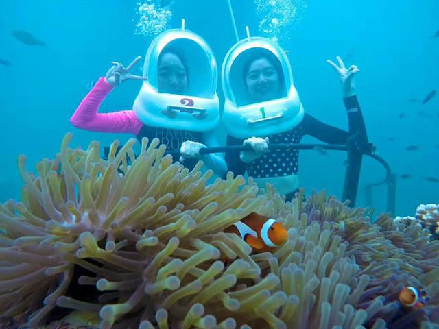 <仙本那珊瑚花园海底漫步半日游>中文服务 专业人员指导 时间灵活 多时段出发 和尼莫来一场邂逅