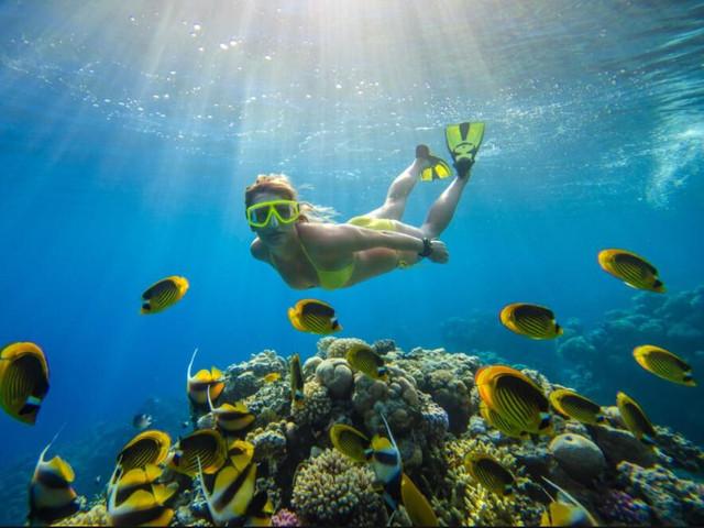<泰国 普吉岛 动力双体游艇五岛+洛克岛一日游>五岛和洛克岛超赞浮潜体验、两餐和BBQ