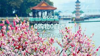 华东六市+扬州+乌镇双飞7日游