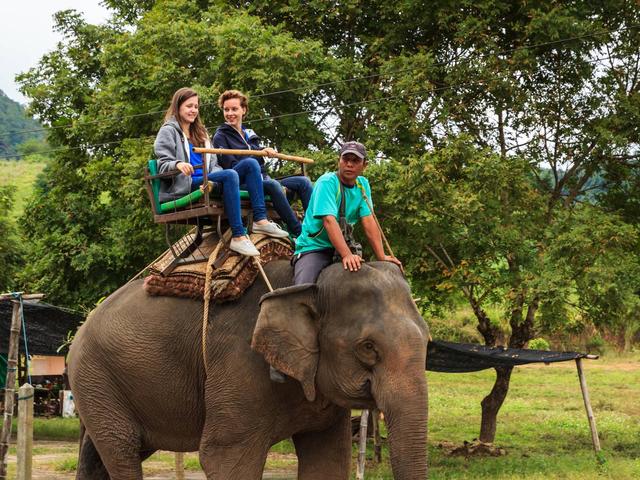 <【普吉岛沙法里骑大象半日游】亲子游>骑大象, 山顶大佛,猴子表演,蛇表演,ATV越野车等多种套餐搭配