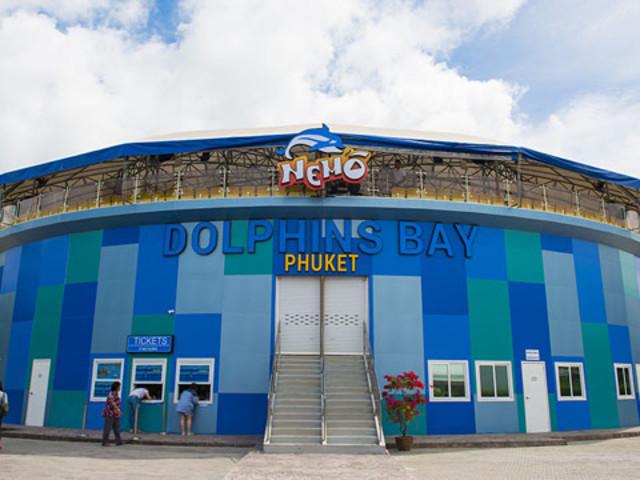 <【普吉岛尼莫海豚馆·海豚表演门票】>Nemo Dolphins Bay Phuket可选接送 ,亲子游必选经典海豚游