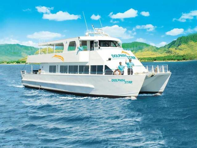[端午]<美国夏威夷欧胡岛观赏野生海豚一日游>寻找海豚之旅  含浮潜  含BBQ午餐