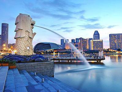 新加坡特殊商务签证