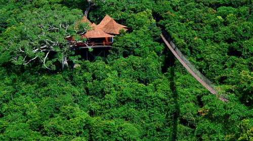 三亚蜈支洲岛+森林公园双飞5日游
