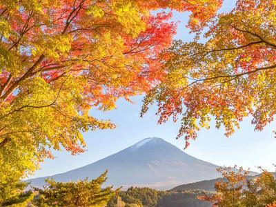 日本东京-富士山箱根一日游 【人气经典 纯玩不