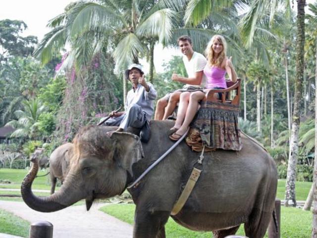 <泰国普吉岛 卡塔海景大象营30-60分钟骑大象体验免费酒店接送可订当天> 30分钟/60分钟骑大象 多时间段酒店接送
