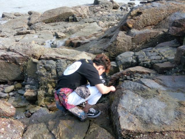 [清明]<小嶝岛+渔民生活体验+环岛路+海鲜餐+看金门一日游>【6人慢游小团 抓鲍鱼 渔民带赶海 螃蟹现做 】