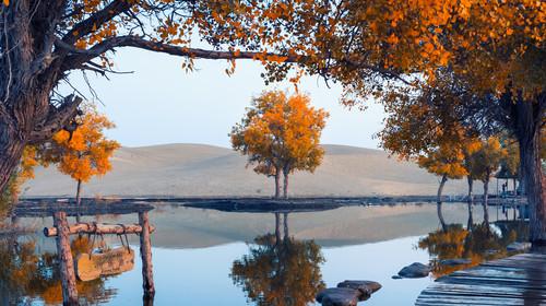 新疆库尔勒+罗布人村寨+博斯腾湖+库车大峡谷+克孜尔千佛洞5日游