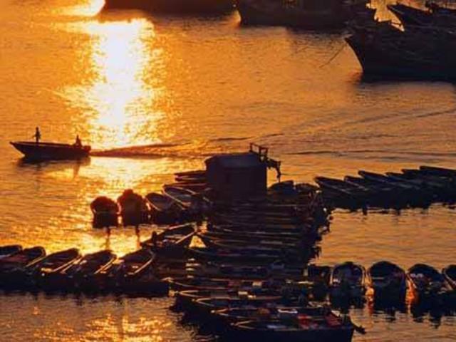 <香港大澳渔村+港珠澳大桥+小轮船+皇悦酒店午餐>美食生态一日游