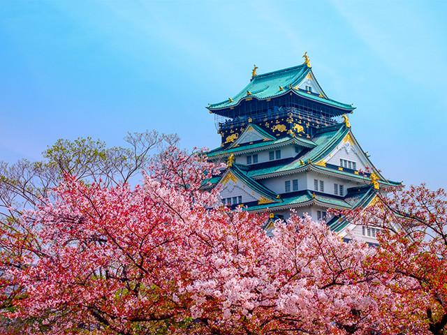 <日本大阪关西机场至市区单程接送机>一价全包,中文客服,免费等待