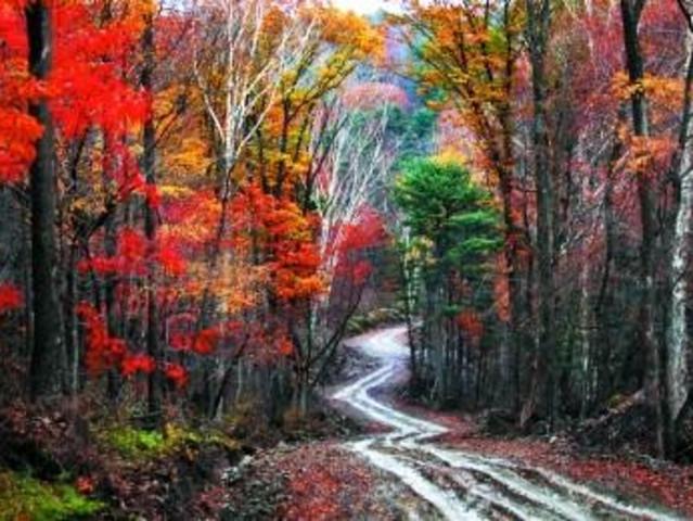 <横头山一日游>横头山国家森林公园是2007年国家林业局设立的,位于哈尔滨市区东南59公里处的金代发祥地境内,在大岭