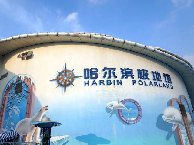 <哈爾濱極地館景區單門票>哈爾濱極地館 看白鯨表演 北極熊 企鵝 當天可定急速出票
