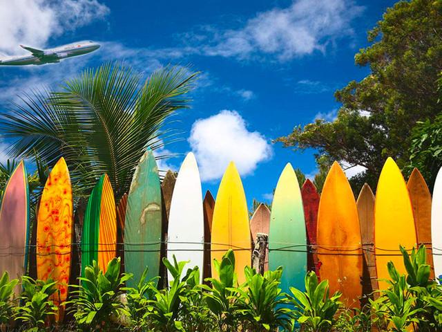 <【专车接送】美国夏威夷机场-夏威夷市区酒店单程接机送机服务>假期安全+方便+无忧 专车专享,不等人,不拼车,说走就走
