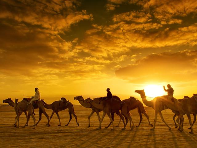<迪拜7天5晚>当地参团两人即可成团 AL MAHA沙漠酒店+7星帆船酒店+阿布扎比总督酒店,骆驼骑行+沙漠冲沙(当地参团)