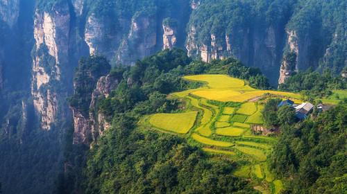 长沙-张家界森林公园-凤凰古城双飞6日游