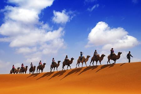 <摩洛哥10天9晚当地游游>飞机去沙漠多重体验全景深度舒适之旅,不拉长途车飞机去沙漠八大体验活动沙漠火锅菲斯温泉悬崖咖啡(当地游)